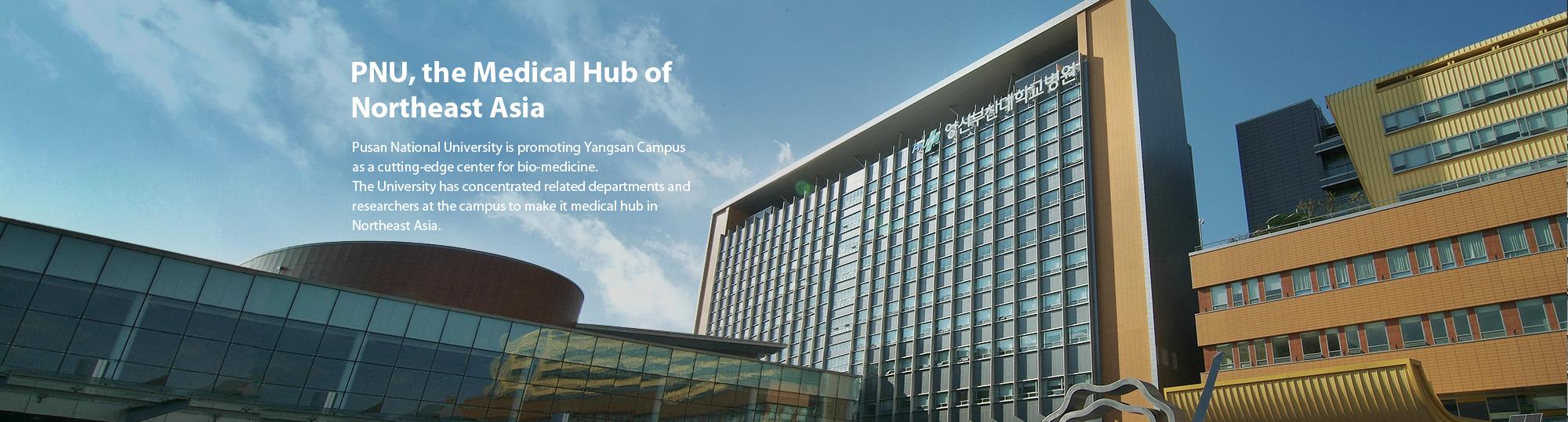 Trung tâm y học đông bắc Á đại học quốc gia Pusan